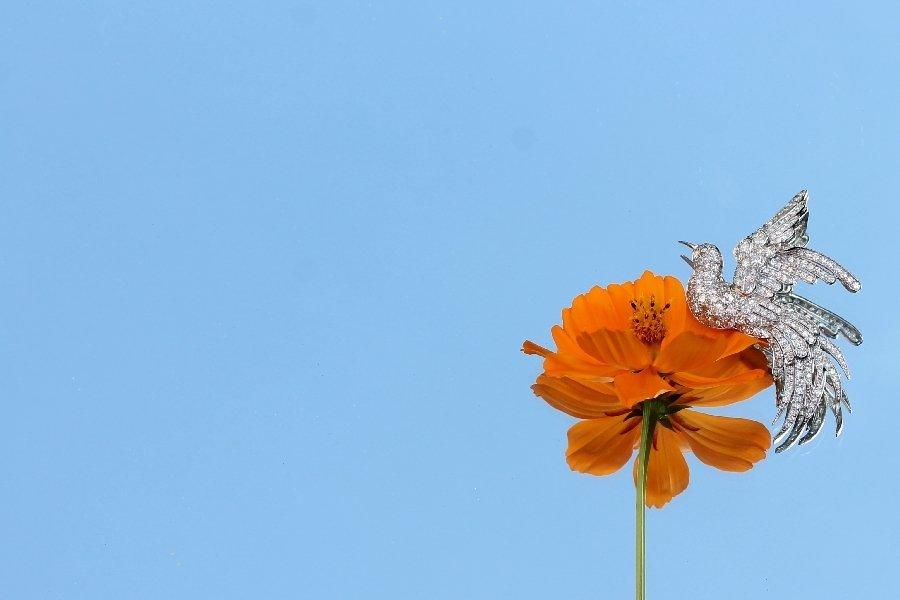 Estate diamond brooch from the fifties bird of paradise