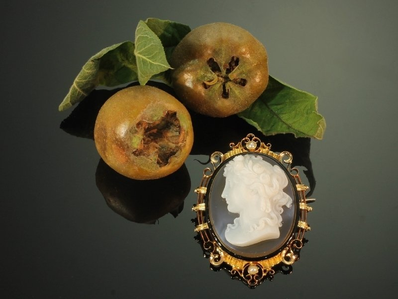 French Victorian antique hard stone cameo in elegant enameled mounting