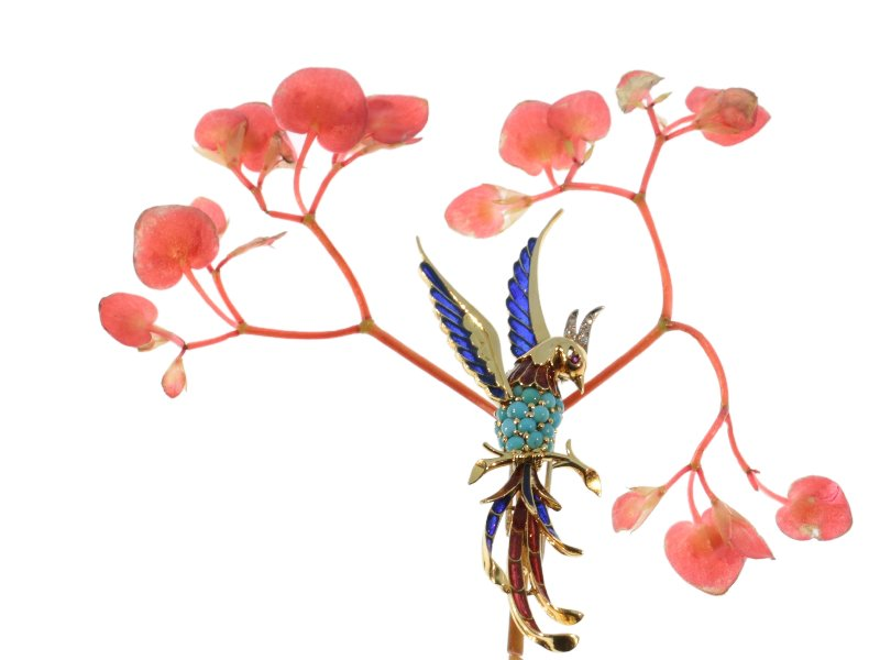 Click the picture to get to this French Fifties bejeweled gold brooch bird of paradise with plique ajour enamel