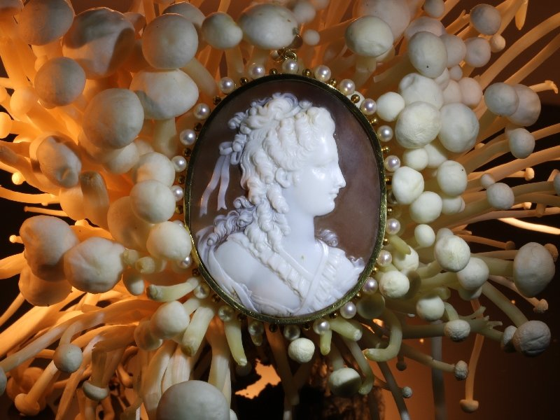 Click the picture to get to see this Large Vintage high quality carving cameo in gold mounting embelished with pearls.