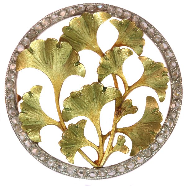 Click the picture to get to see this most charming Art Nouveau brooch with diamonds and Ginkgo biloba leaves.