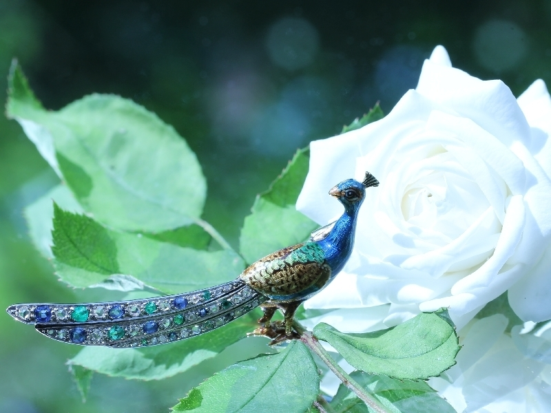 Click the picture to get to see this Charming peacock brooch enameled with a tail set with diamond sapphire emerald.