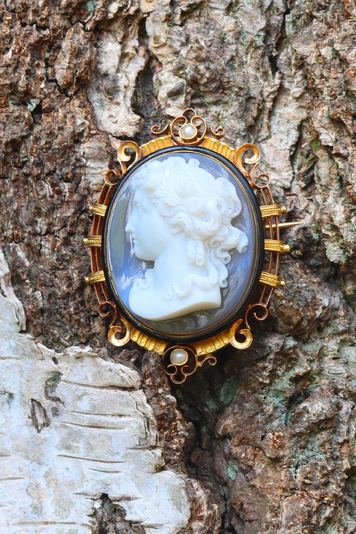 Click the picture to get to see this French Victorian antique hard stone cameo brooch/pendant in elegant enameled mounting.