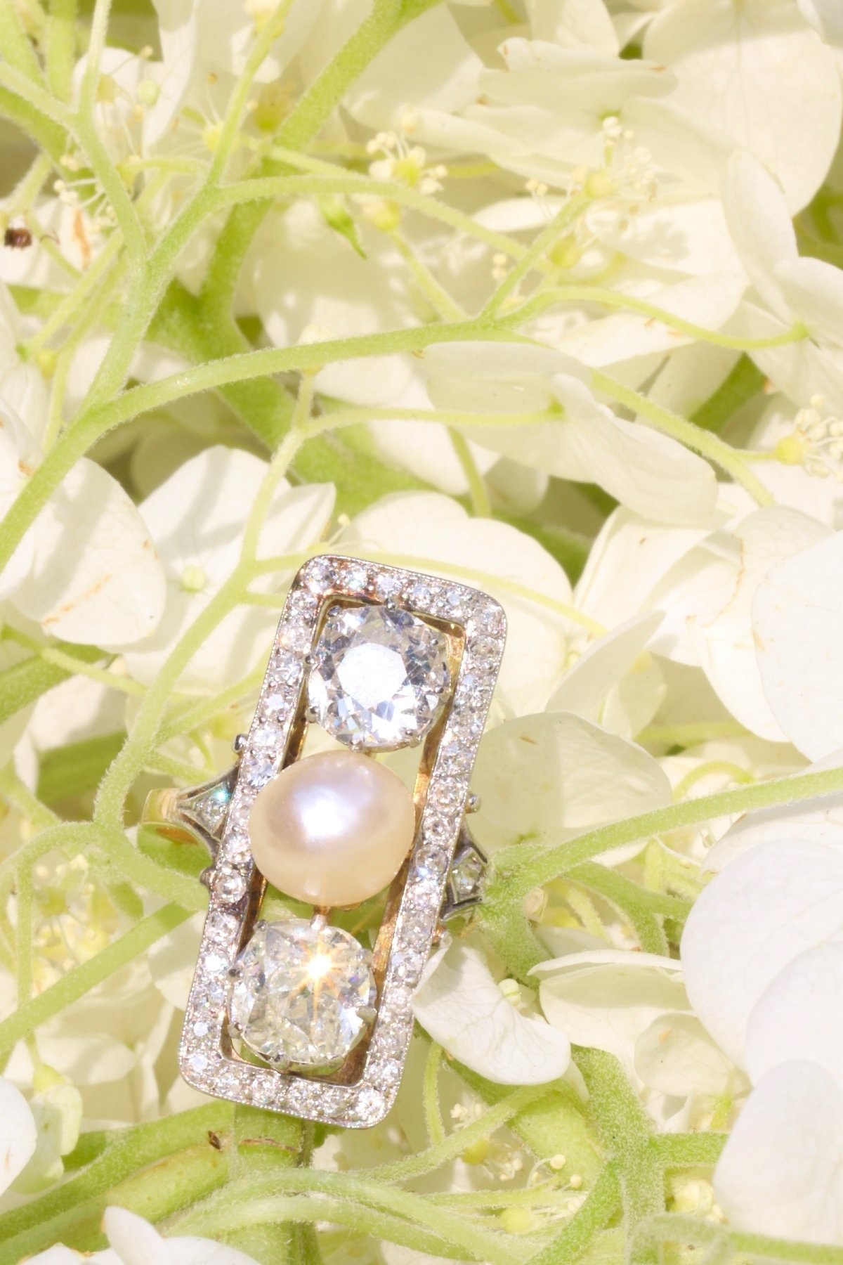 Click the picture to get to see this Large impressive Belle Epoque Art Deco diamond and pearl engagement ring.