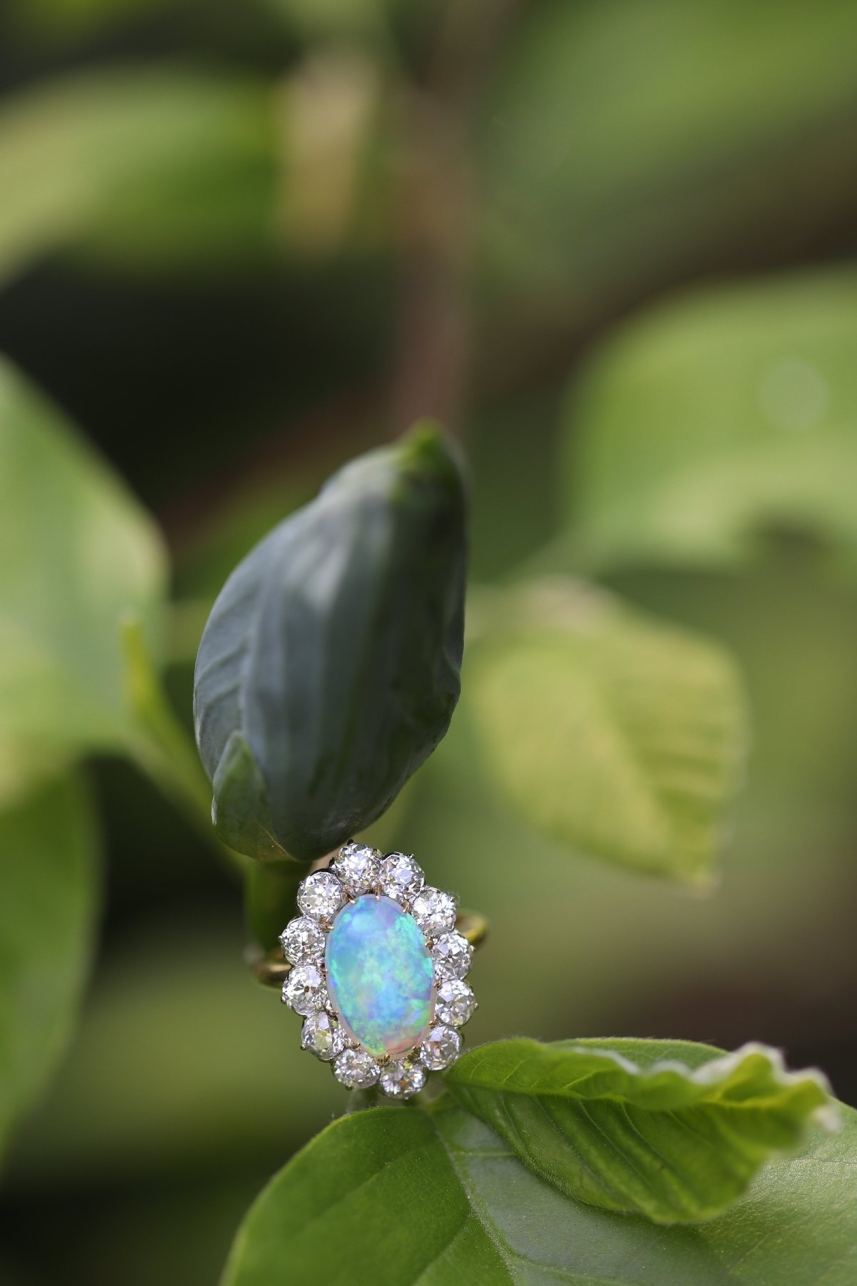 Click the picture to get to see this Antique Belle Epoque opal and diamonds ring can be changed into a pendant.