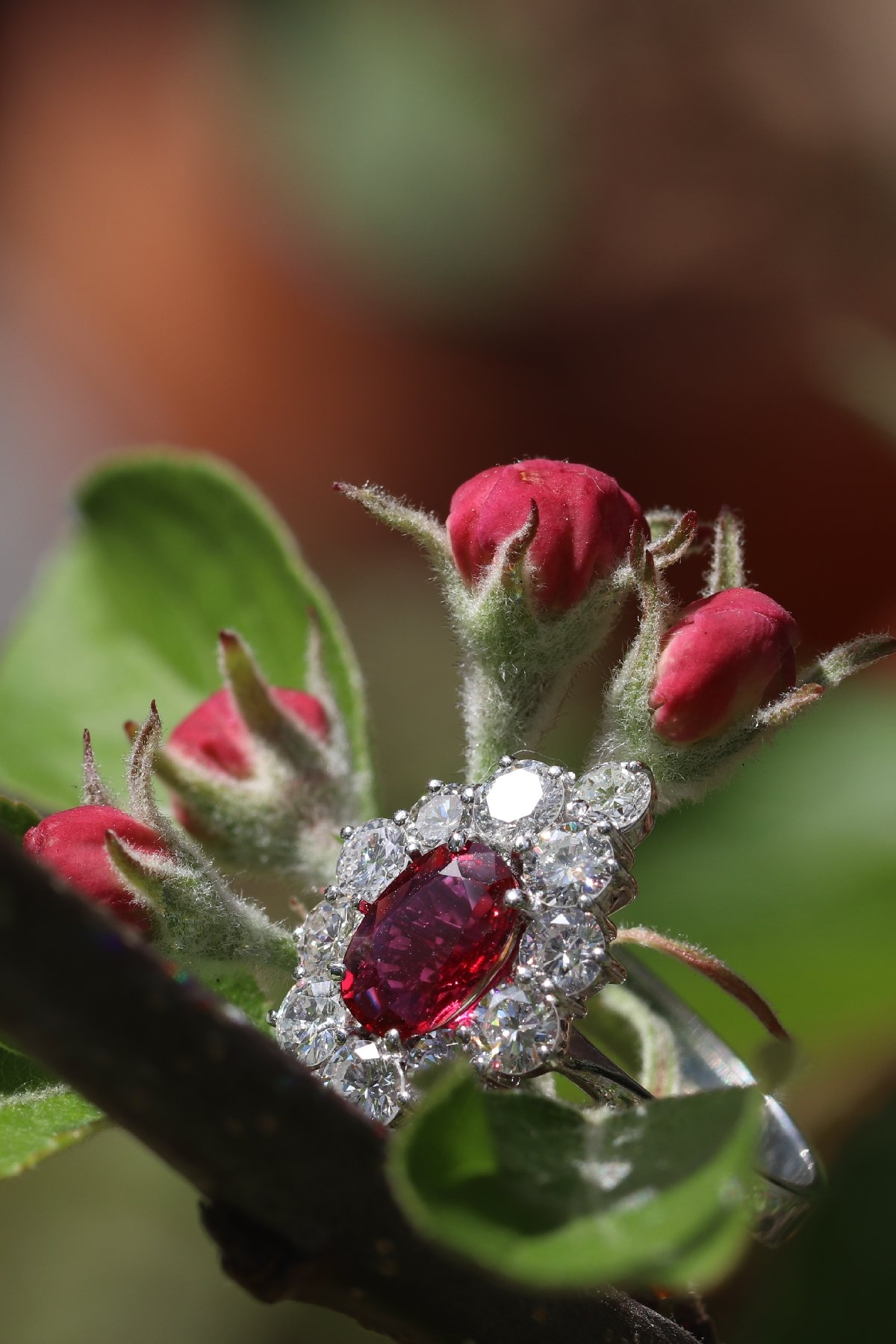 Click the picture to get to see this Vintage 1970's ring with beautiful ruby and set with 12 brilliant cut diamonds.