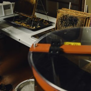 Golden Honey Harvest at the Garden of Adin Fine Vintage and Antique Jewellery